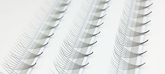 Picture of 7D Volume Fans Single 11mm0.05 Curl—D