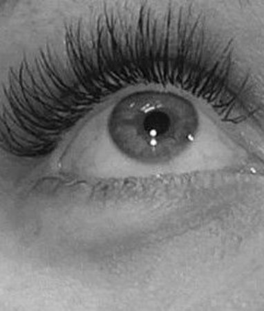 Picture for category Lashes